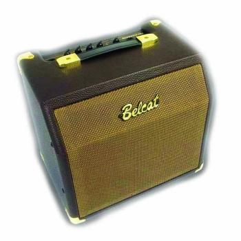 15W Acoustic Amp with Chorus (BE-ACOUSTIC15C)