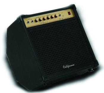 35-watt Bass Amplifier (CI-CB-35)