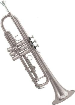 Silver Plated Deluxe Trumpet Outfit (EM-ETR604S)