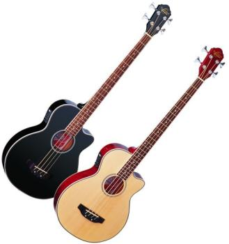 Acoustic Electric Bass (OS-OB100)